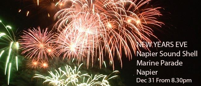 Napier's Official Free Family New Year's Eve Event