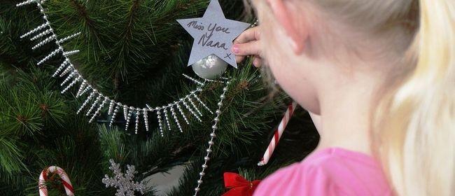 Hospice West Auckland Christmas Stars