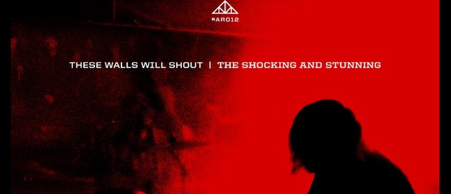 The Attic Presents: the Shocking & Stunning Cassette Release