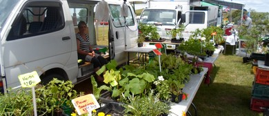 Pokeno Country Market