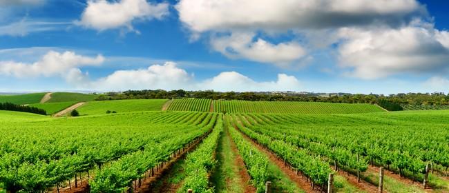 New Zealand Wine Centre Wine Club