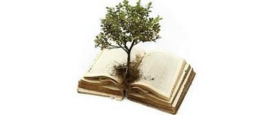 Spiritual Knowledge Course