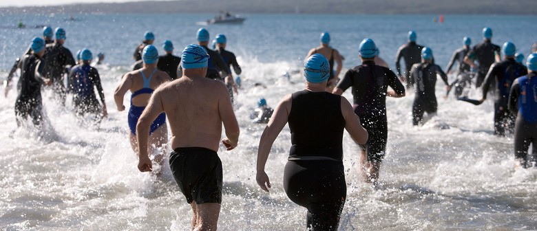 Sovereign New Zealand Ocean Swim Series - King of the Bays