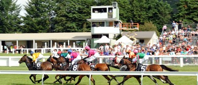 Taupo Thoroughbred Racing Club