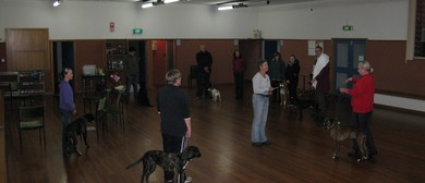 Indoor Dog Training Course
