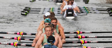 Gallagher Great Race, Festival of Rowing