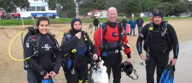 Snorkel Scuba Race