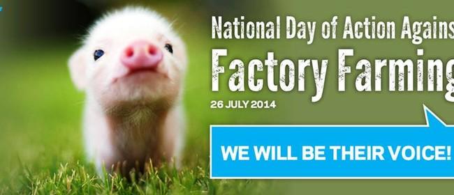 Hamilton Rally Against Factory Farming
