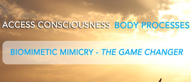 Access Consciousness - The Game Changer