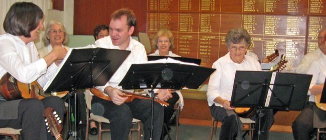 Mandolin Concert