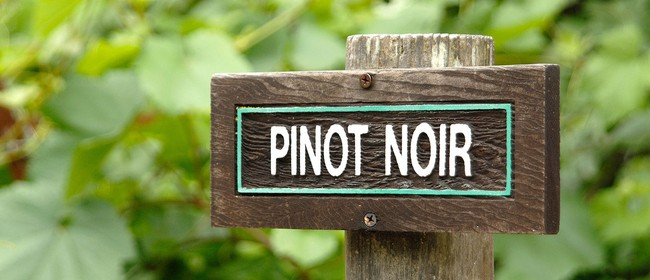 Pinot Noir Club: New Zealand - New Producers & Vintages