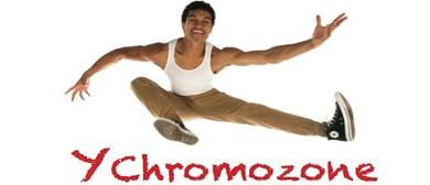 Y Chromozone