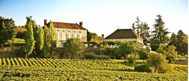 Red Burgundy 2011