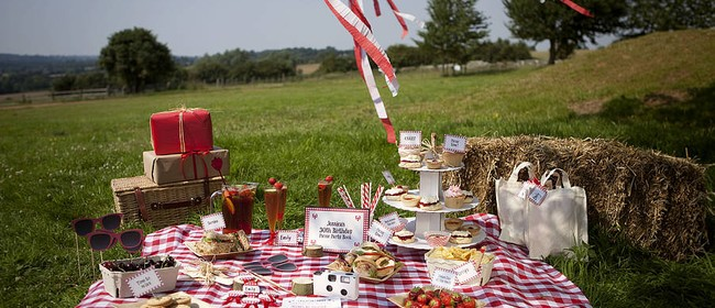 Minor Party Party and Picnic