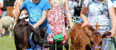 Agricultural & Gala Day