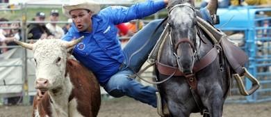 50th Anniversary Rerewhakaaitu Rodeo