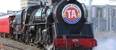 Short Steam Train Ride