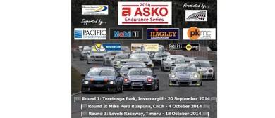 South Island Endurance Series, Round 2