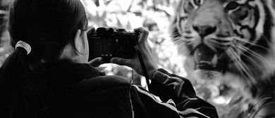 Auckland Zoo Young Photographers Workshop