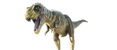 Tyrannosaurs: October Sleepover