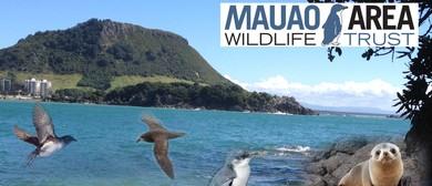 Mauao Area Wildlife Trust Open Day