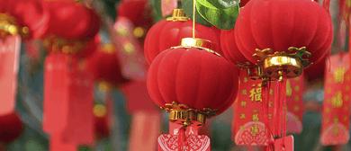 Lingo - Beginner Mandarin