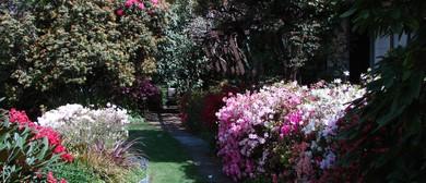 Rotorua Rhododendron Festival