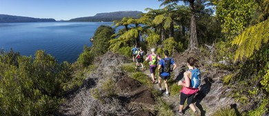 Tarawera Trail Marathon and 50k