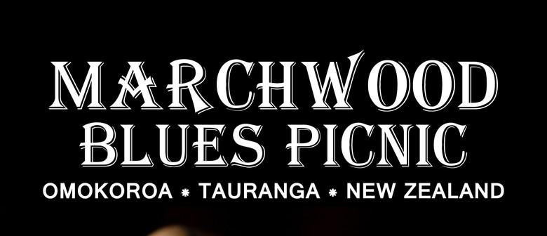 Marchwood Blues Picnic