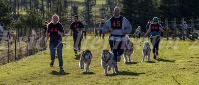 Ridge Runners Sled Dog Racing Club, Bikejor and Canicross