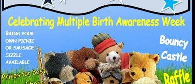 Teddy Bears Picnic - Celebrate Multiple Birth Awareness Week