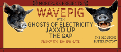 Morepork presents:Wavepig/Ghosts Of Electricity + More