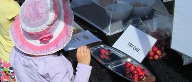 Fruit & Berry Fest