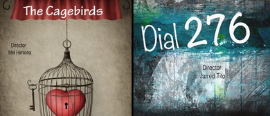 The Cagebirds and Dial 276