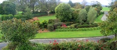Garden Ramble