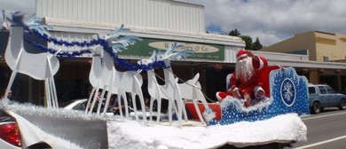 Central Hawke's Bay Community Christmas Parade