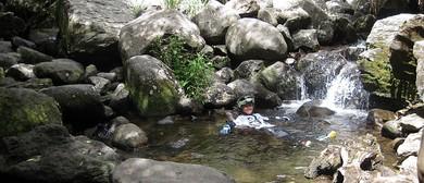 Okupata Caves Adventure