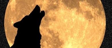 Baching At the Moon -  Cello, Thomas Pierard