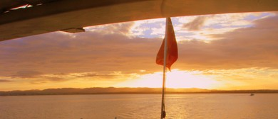 Christmas Group Evening Cruise on Auckland Harbour