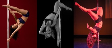 Pole Aerial Fitness for Beginners Wednesdays