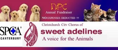 NPC Annual  Fund Raiser - Sweet Adelines