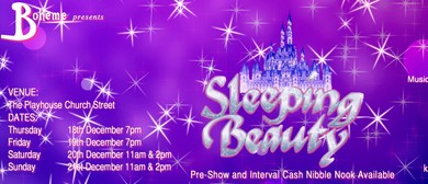 Sleeping Beauty Christmas Pantomime