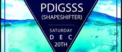 PDigsss