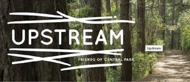 Upstream: the Art Trail - Parks Week