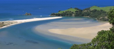 Whangamata Adventure Race