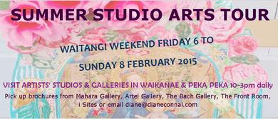 Summer Studio Arts Tour