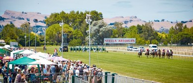 Little Avondale Lowland Stakes ft The Hits Family Zone