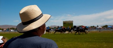 Hawke's Bay Gold Cup