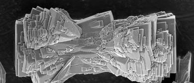 Small Matters: Art From the World of Nanotechnology