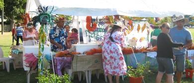 Pasifika Fun Day